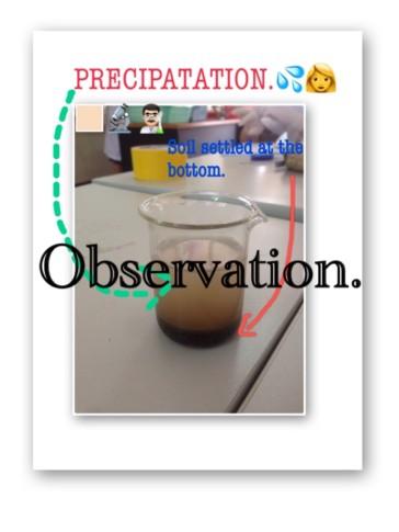Precipatation.Group3_170828_0001